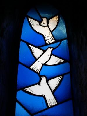 peace-doves.jpg